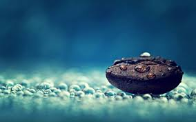coffee bean and water drops hd wallpaper