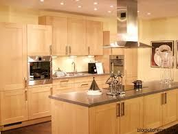 Kitchen Cabinet Surfaces Modern Light Wood Kitchen Cabinets Kitchen Design Ideas Blog