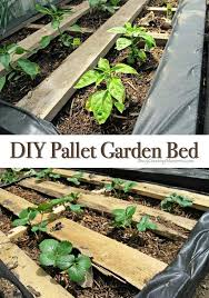 Making A Pallet Bed Pallet Garden How To Make Raised Wood Pallet Garden Bed