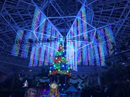 Christmas Lights Decoration Peanut Gang Inside Theme Park Review U2022 Photo Tr Christmas At The Gaylord Palms