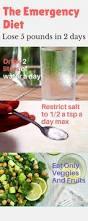 best 25 5 day diet ideas on pinterest 5 2 diet plan pcos meal