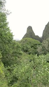 Iao Valley State Park Map by Aloha From Maui Day 3 Daughter 2 U0027s Birthday