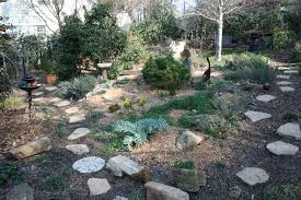 rock garden journal entry 4 gardening with confidence plants
