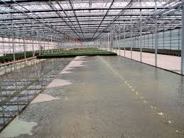 Metal Greenhouse Benches 20 Best Greenhouse Benches Images On Pinterest Greenhouse