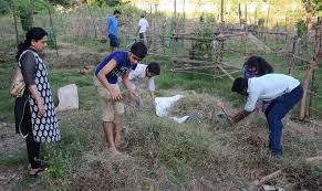 volunteers plant tree saplings near royapuram railway station