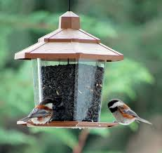 Scare Birds Away From Patio by Backyard Bird Baths And Feeders Keep Them Clean Away From