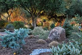 Types Of Botanical Gardens by Types Of Conifers Hgtv