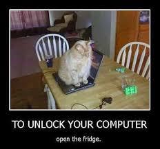 Cat Laptop Meme - friendlypaw blogspot com why cat sit on your laptop