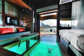 look through the floor of your premium overwater bungalow to the