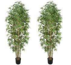 two pre potted 7 artificial bamboo trees with real bamboo trunks
