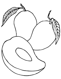 amazing free mango fruit coloring pages for kids printable