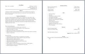 Sample Hair Stylist Resume Objective For Resume Counselor Community Organizer Resume