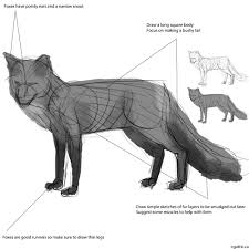 how to draw a dog step by step for beginners free here