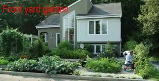drummondville u0027s front yard vegetable garden video veggie