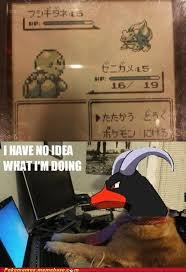 I Have No Idea What Im Doing Meme - pokémemes i have no idea what im doing pokemon memes pokémon