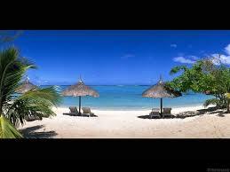 arriere plan de bureau wallpaper plage avec palmiers mer plage plage