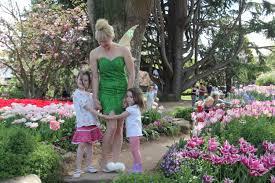 wollongong botanic gardens blog u2014 fairy fantasy parties