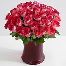 Long Stem Rose Vase Three Dozen Long Stemmed Red Roses