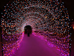 Zoo Lights Oregon by Looking For Things To Do This Weekend Or During The Week Come