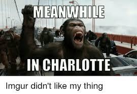 Charlotte Meme - meanwhile in charlotte imgur didn t like my thing charlotte meme