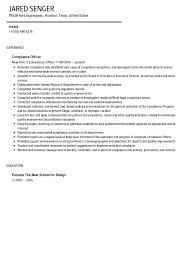 compliance officer resume sample velvet jobs