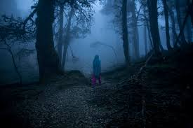 halloween forest background nomads small is beautiful