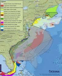 oil prospecting in the atlantic u0027seismic airguns u0027 endanger marine