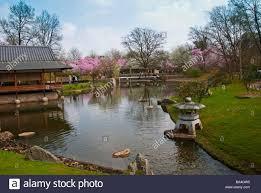 lexus werk japan hasselt stock photos u0026 hasselt stock images alamy