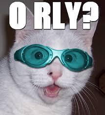 O Really Meme - o rly xsp