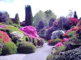 garden design with easy landscape ideas for front flowers lake