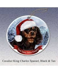 amazing deal black and white cavalier king charles spaniel