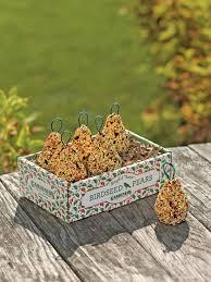 bird seed ornaments bird seed pear tweets gardeners
