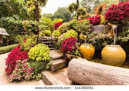 garden flowers stock images royalty free images u0026 vectors