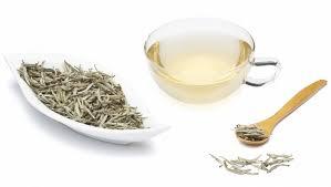 Teh Putih 3 khasiat manfaat kesehatan minum teh putih 盪 produk peluang