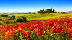 field hills farms houses landscapes hill nature trees tuscan