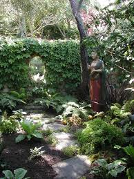 109 best ferns images on pinterest ferns shade garden and