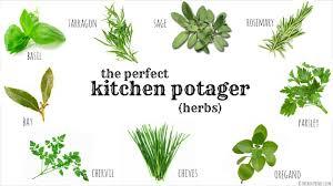 herb herbs used in kitchen herb gardens onfarming