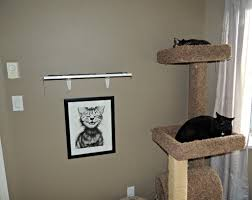 Homemade Cat Hammock by Cat Wall Shelves Image Collections Home Wall Decoration Ideas
