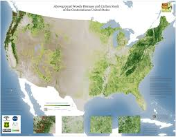Detailed Maps Of The United States by Forest Carbon Map Released For The Us