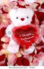 valentines bears valentines special june 2011