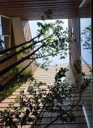 Interior Garden House A Modern Japanese House With A Surprise Garden Inside Japanese