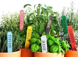 Gardening Trends 2017 3 Big Landscape Trends For 2017 Turf