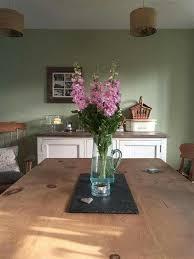 Apple Green Paint Kitchen - cooking apple green by farrow u0026 ball going green pinterest