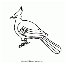 outline of a bird coloring home