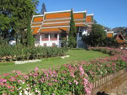 doi suthep temple and bubhing royal winter palace driver hire