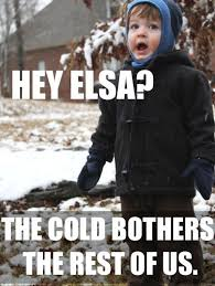 Freezing Meme - i love limited cold like when i don t need to leave the house and