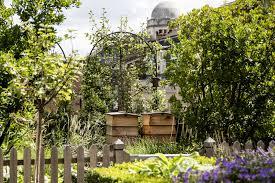 Roof Garden Plants Browse Roof Gardens Gardenista