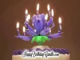birthday candle flower happy birthday flower candle