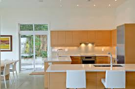 Contemporary Design Kitchen by Download Modern Kitchen Design Home Design Contemporary Modern