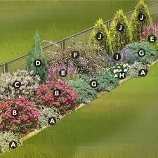 Fence Line Landscaping by Best 25 Hedges Landscaping Ideas Only On Pinterest Hedges